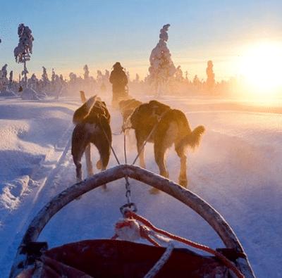 Lapland vakantie boeken? Unieke vakanties met Xplore the North!